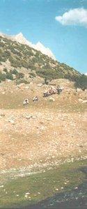 Начало подъема на перевал Дук-Дон